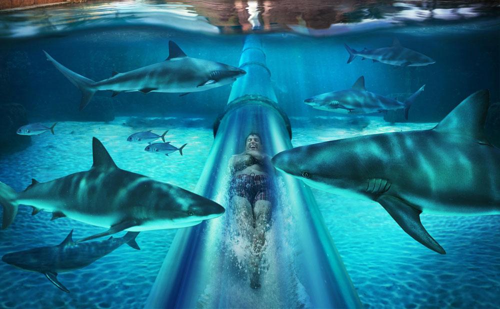 AtlantisResortOTW1440x900-1024x640 Featured Resort of the Week: Atlantis Paradise Island