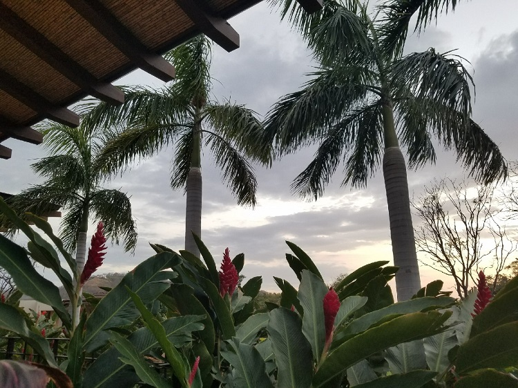Sunset An All Inclusive Vacation to Costa Rica: A Travel Agent's Perspective
